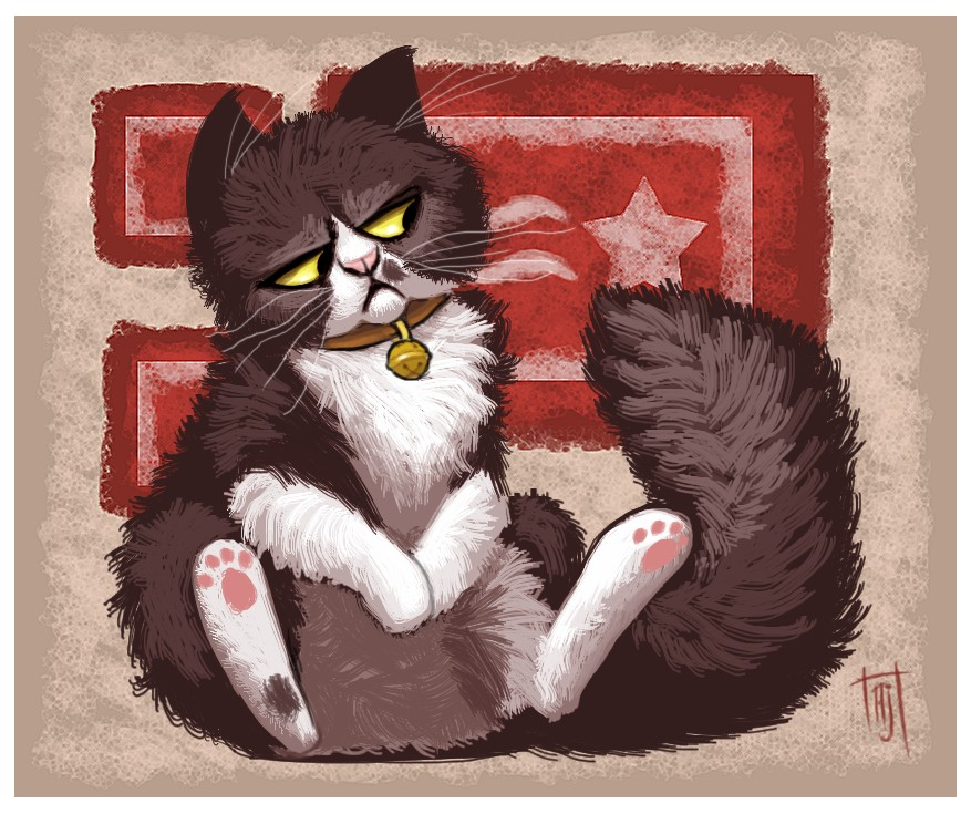 Grumpy Cat art funny desktop wallpapers hd Background HD Wallpaper 877x735