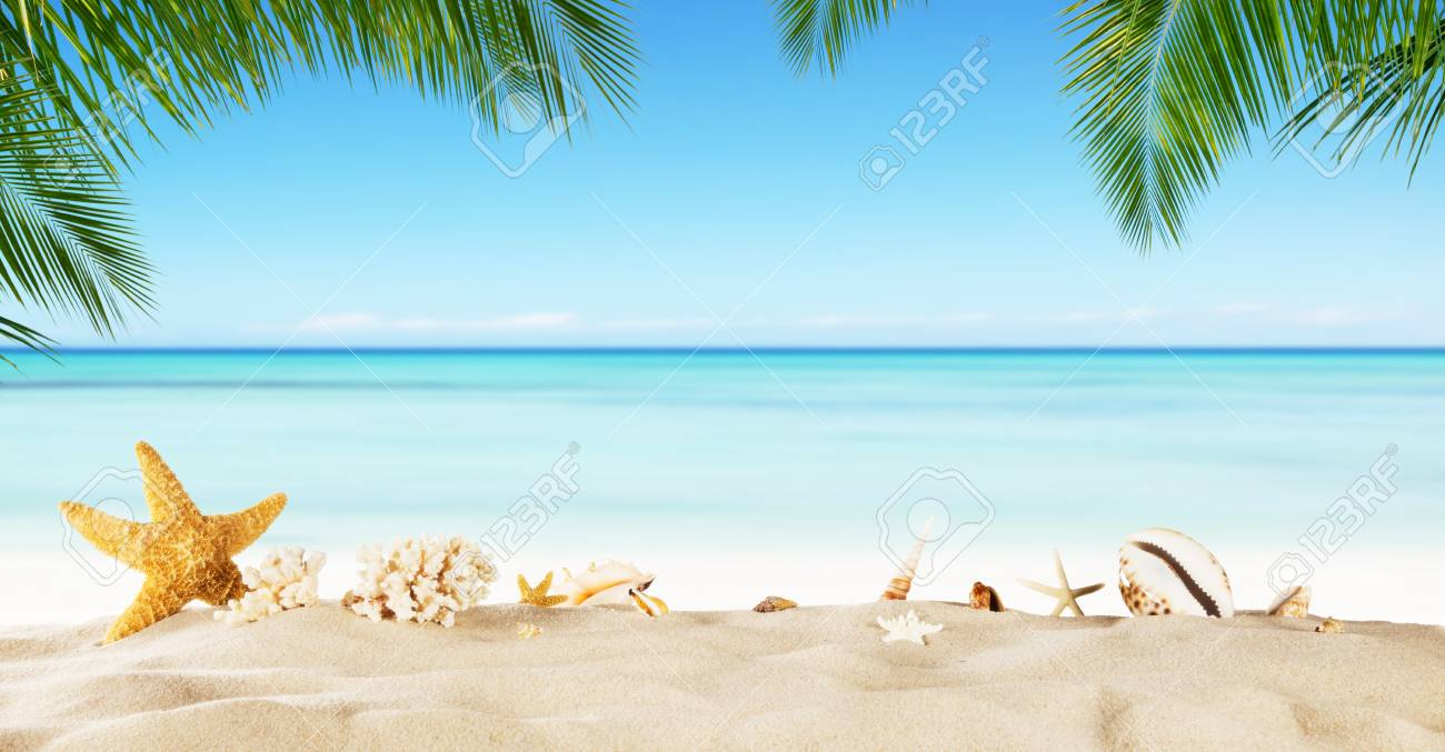 Tropical Beach With Sea Star On Sand Summer Holiday Background 1300x677