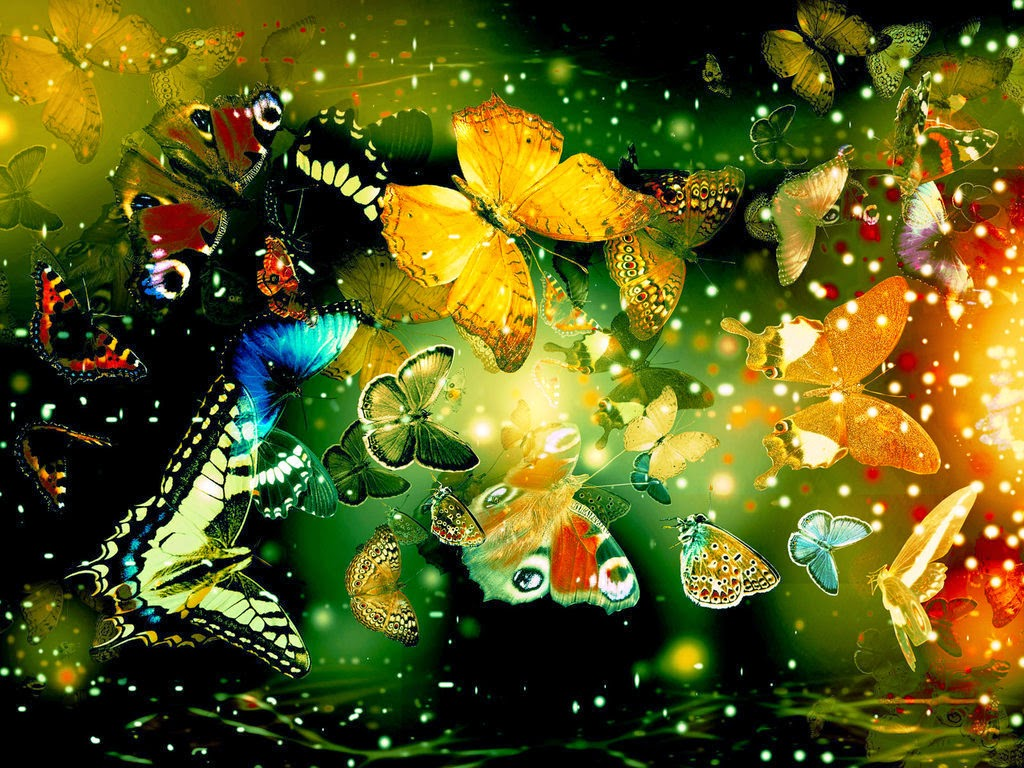 Colorful Butterfly HD Wallpapers Real amp Artistic 1024x768