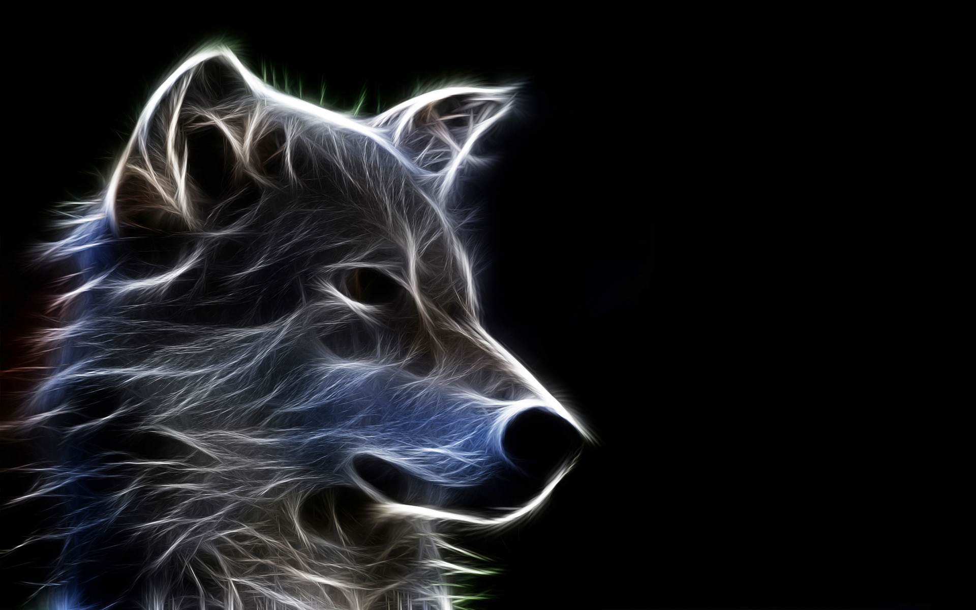3d wallpapers hd animals - photo #10