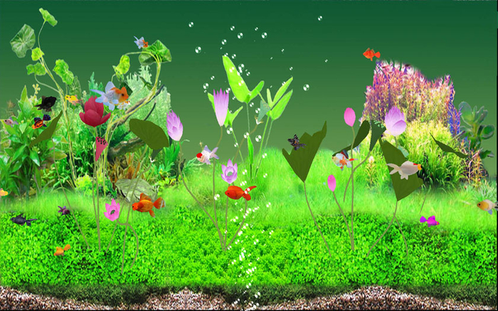Fish Aquarium Screensaver Windows 7 700x437