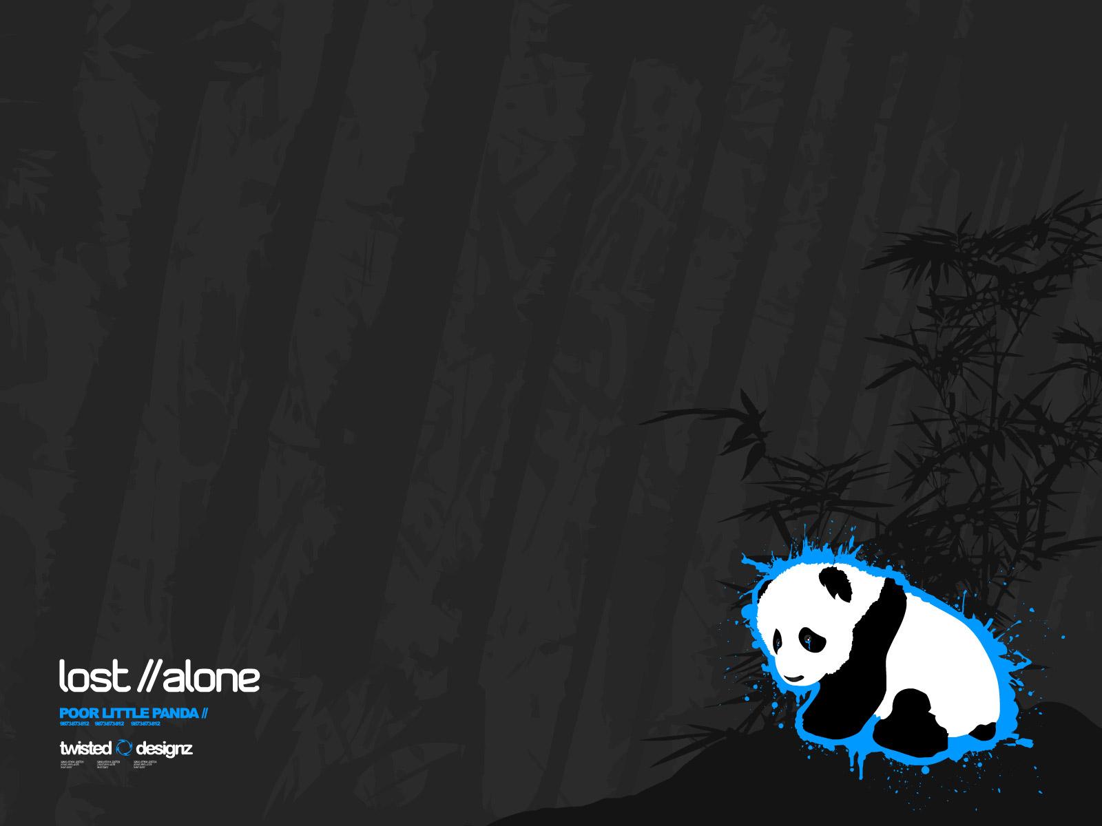 Panda wallpaper   Pandas Wallpaper 683890 1600x1200