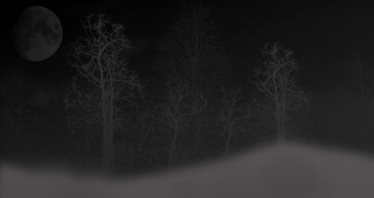 free background fog night 1263x671