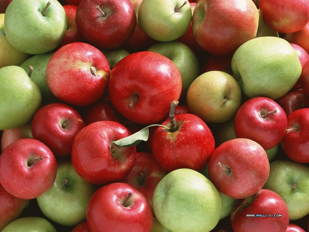 Apples   Fruit Wallpaper 1201901 1024x768
