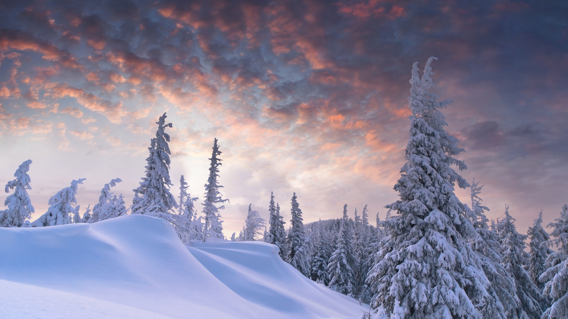 Winter and Snow Wallpaper 1920x1080