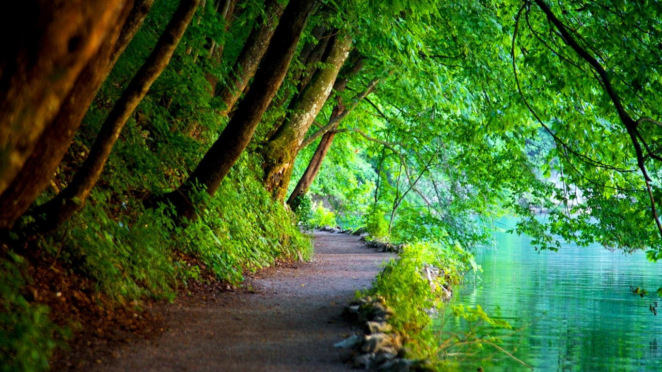 Nature Green Wallpaper Background PC 2941 Wallpaper Cool 1366x768