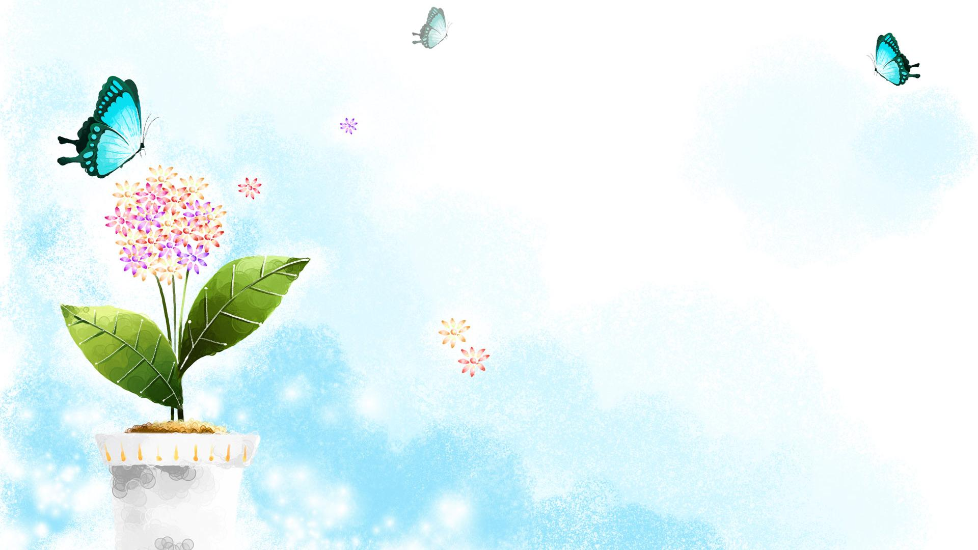 Butterfly Wallpaper Backgrounds Widescreen and HD background Wallpaper 1920x1080