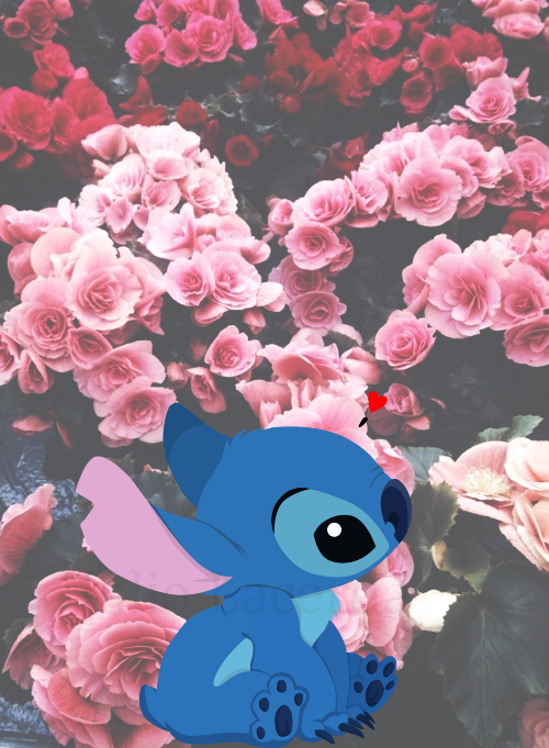 Free Download Stitch Wallpaper 500x681 For Your Desktop