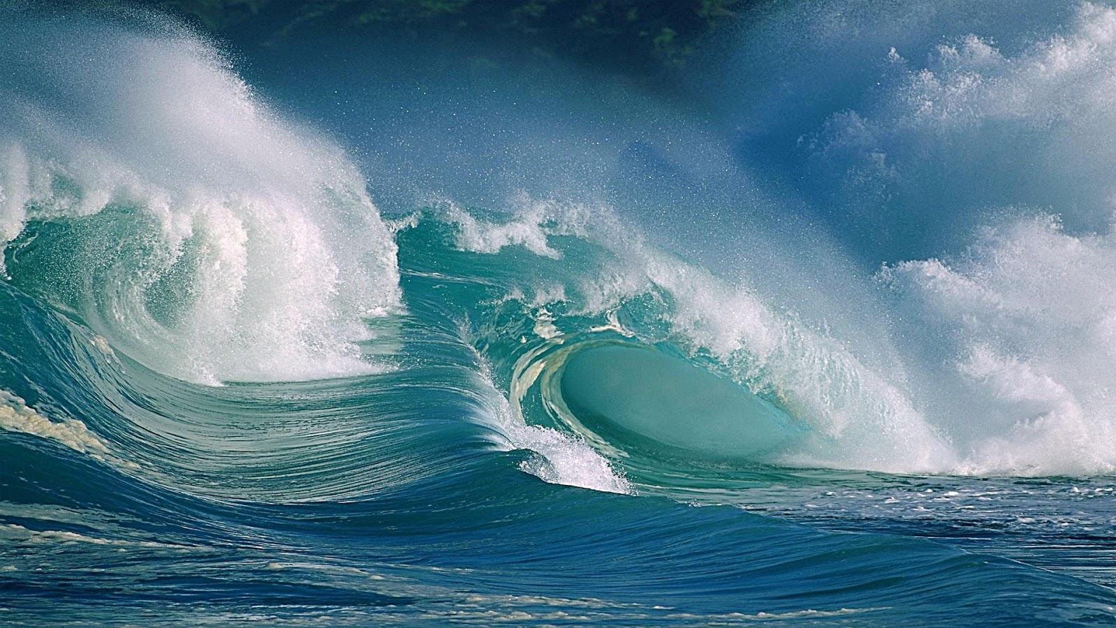 Awesome Ocean Surf Windows 8 Desktop Hd Wallpapers 1920x1080 picture 1600x900