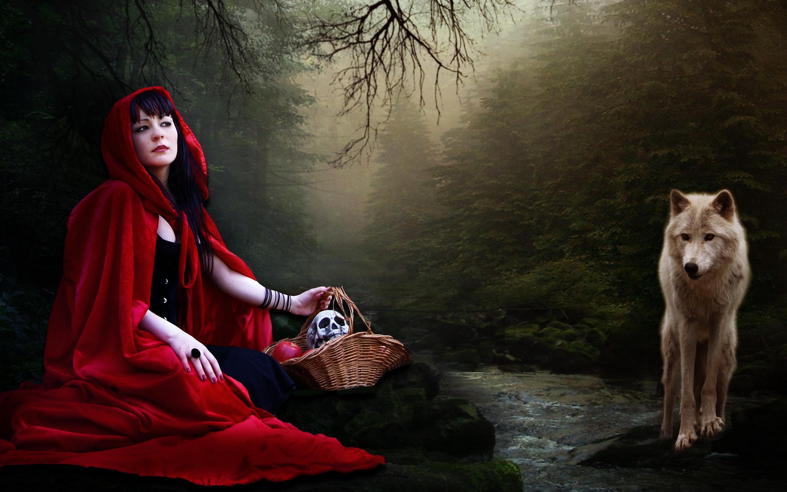 Adult Female Costumes  Costumescomau