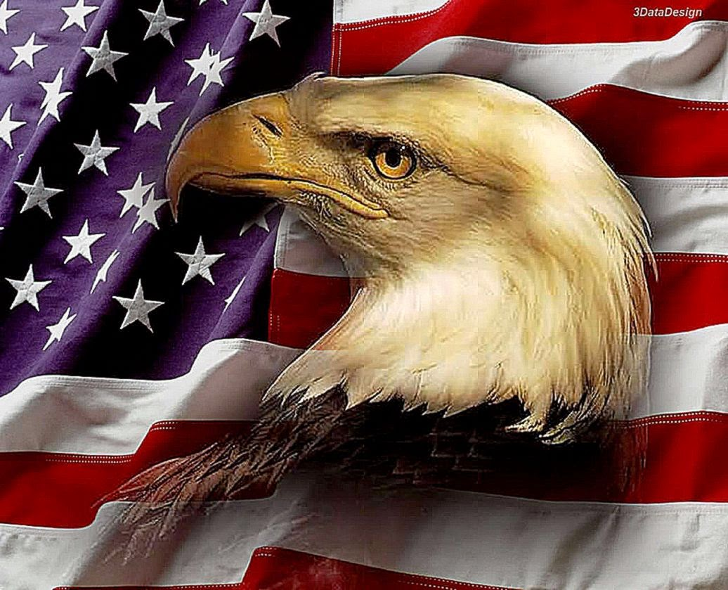 Patriotic Eagle Wallpapers Best HD Wallpaper 1036x839