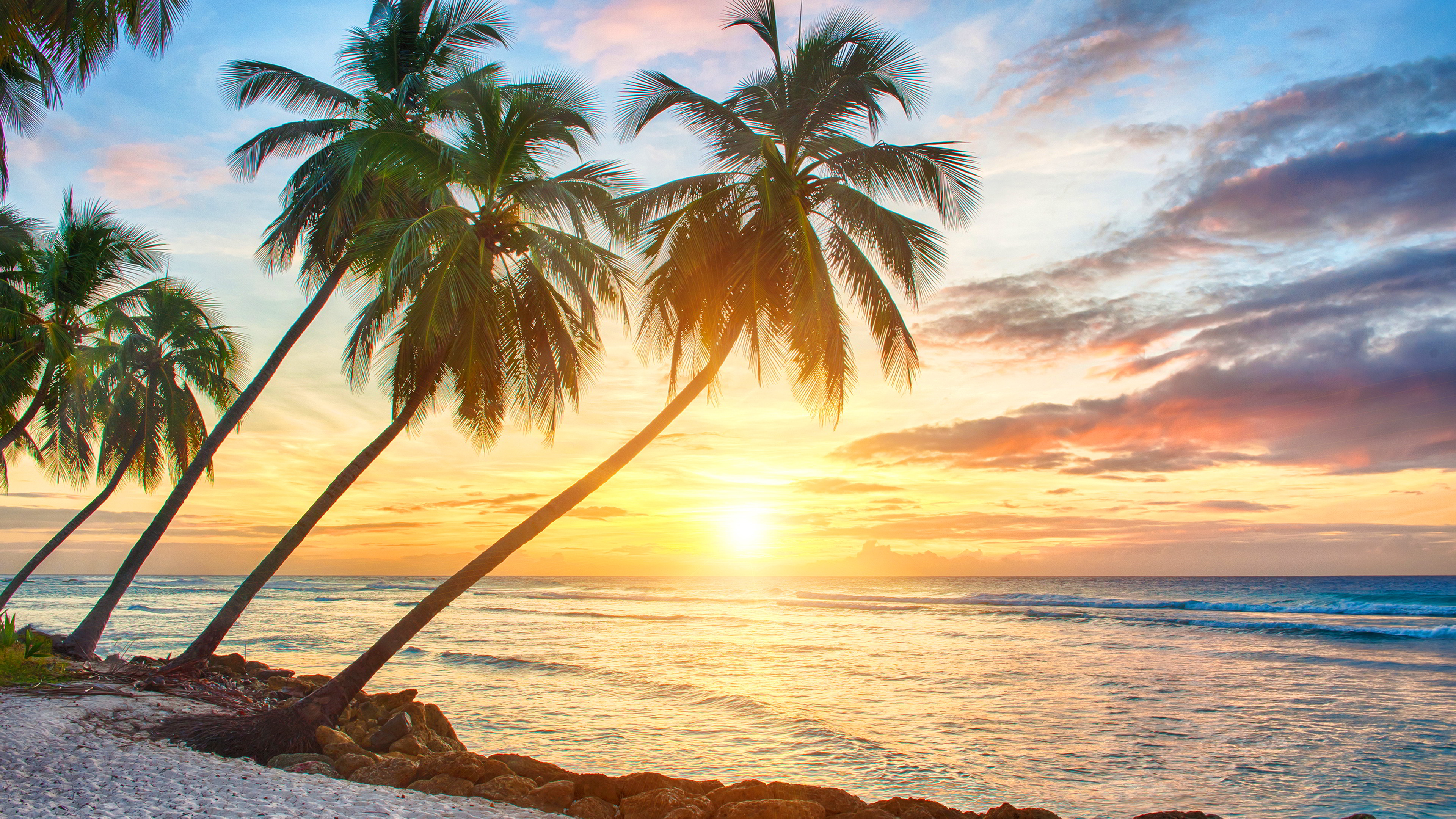 Tropical Background 3840x2160 - Full HD Wall