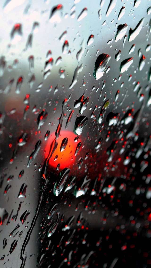 Fresh Rain Drops IPhone 5s Wallpaper Download Wallpapers 640x1136