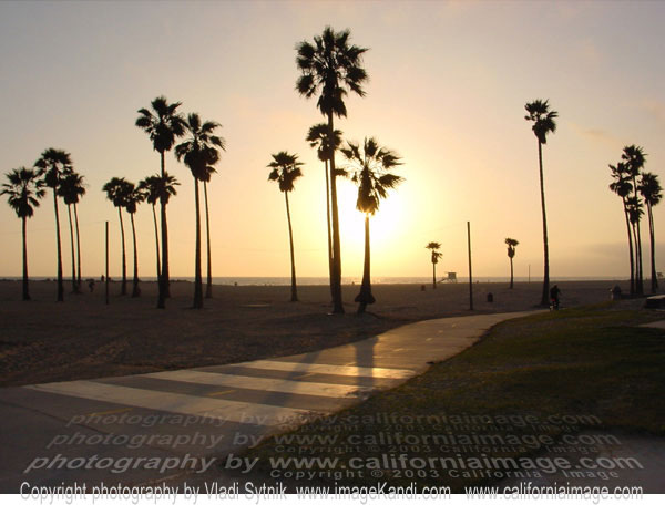 and Places Pictures and Info venice beach california wallpaper 600x465