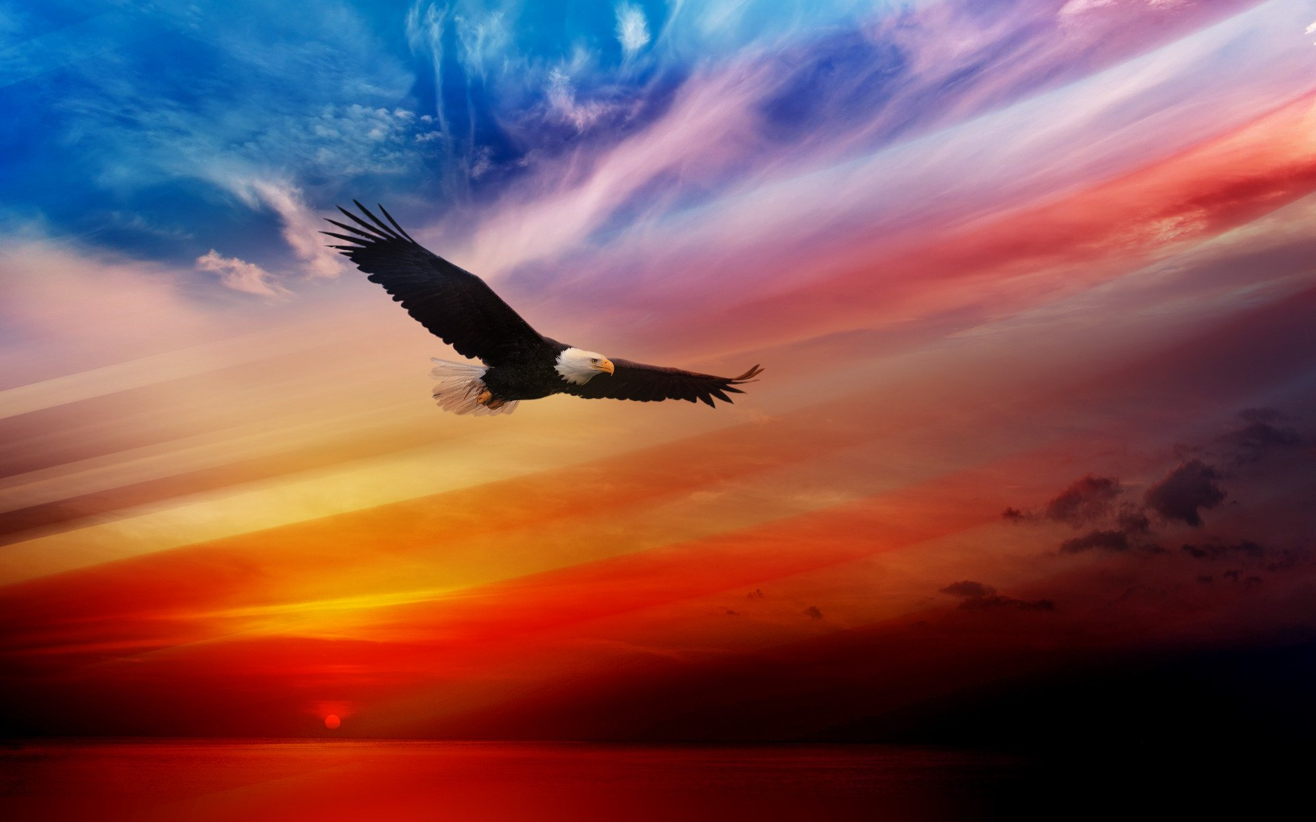 20 Cool Eagles Wallpapers BlogofTheWorld 1920x1200
