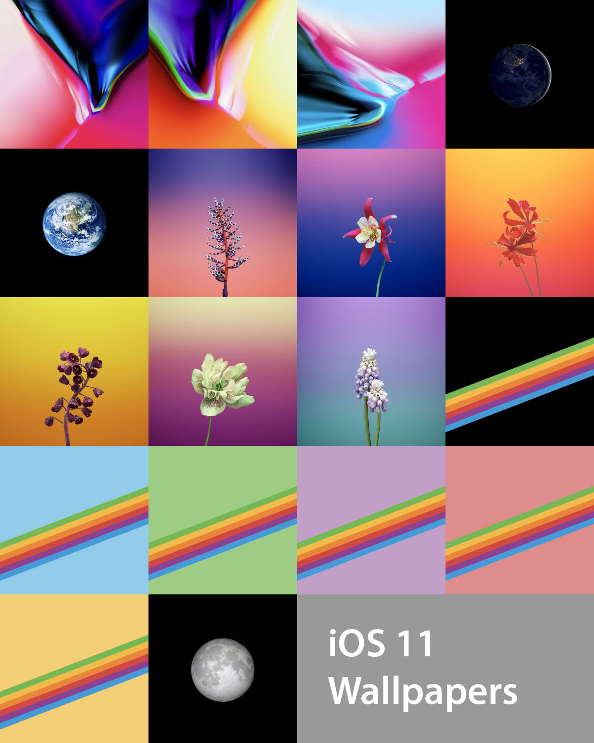 Download The Official iOS 11 Wallpapers For iPhone And iPad 1200x1500