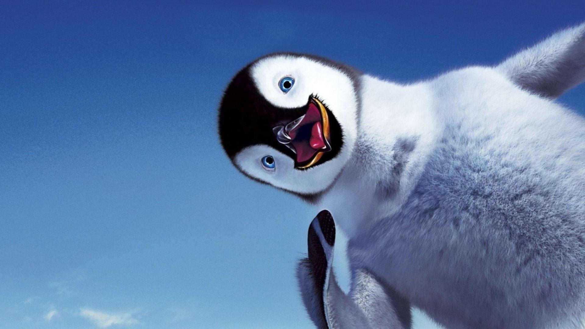 Penguin Fun wallpaper 1920x1080