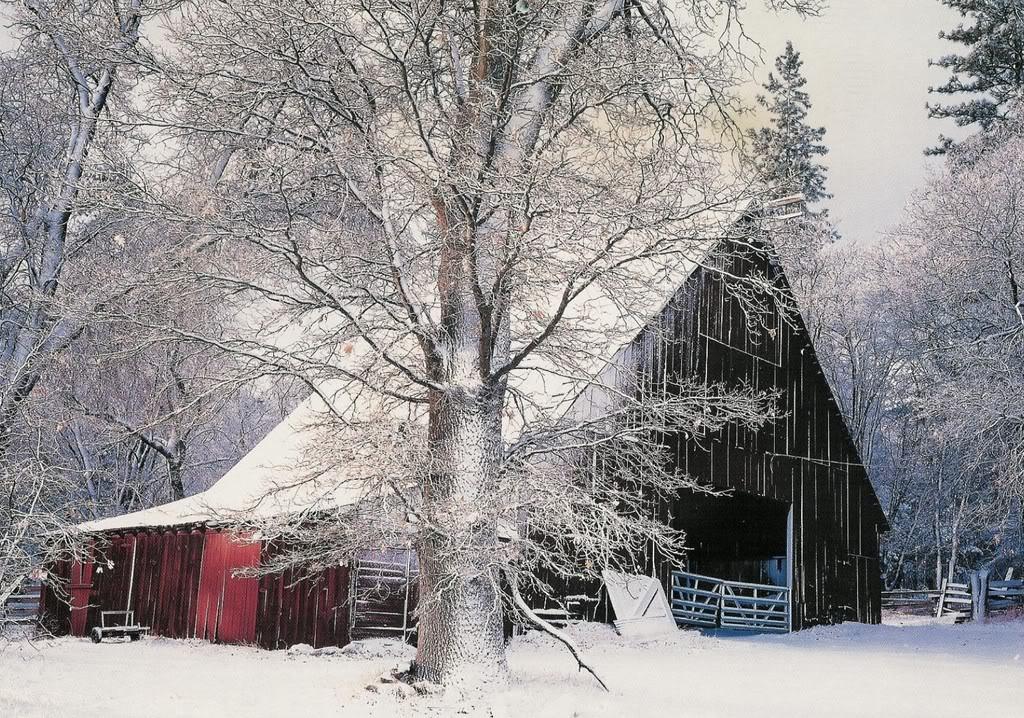 48+] Winter Cabin Scenes Wallpaper on WallpaperSafari