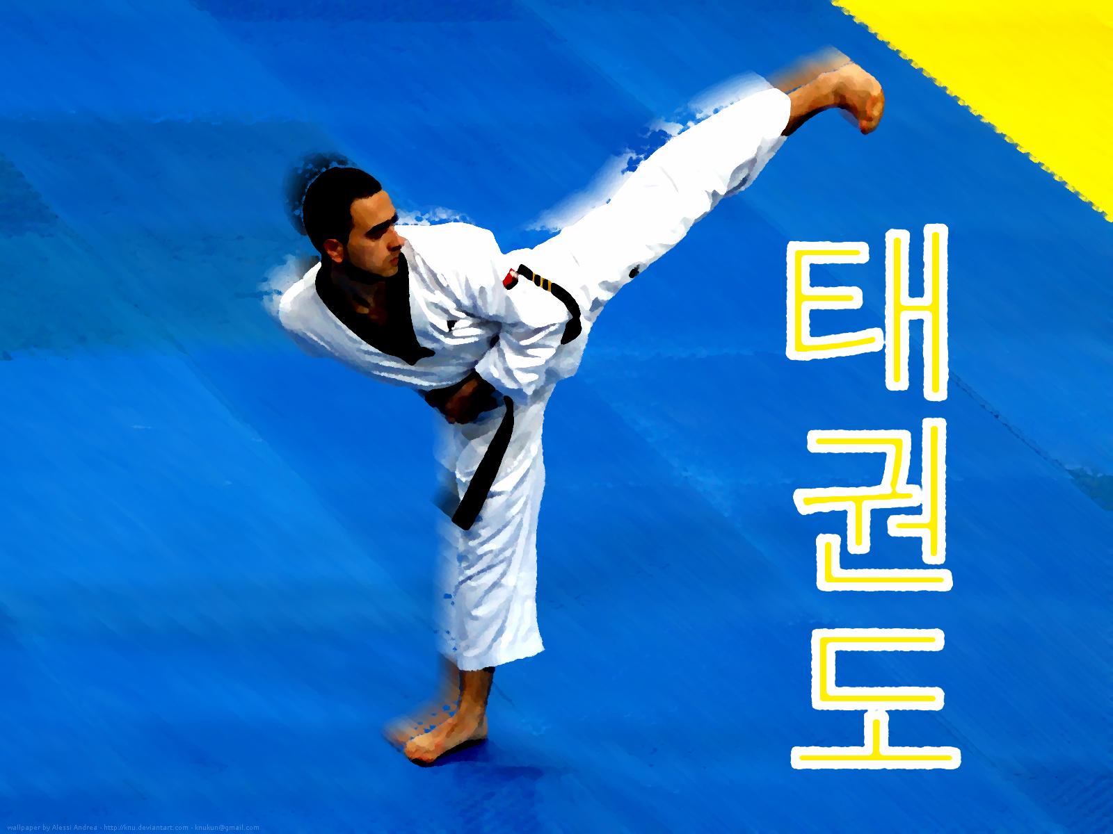 Taekwondo wallpaper 1 by Knu 1600x1200