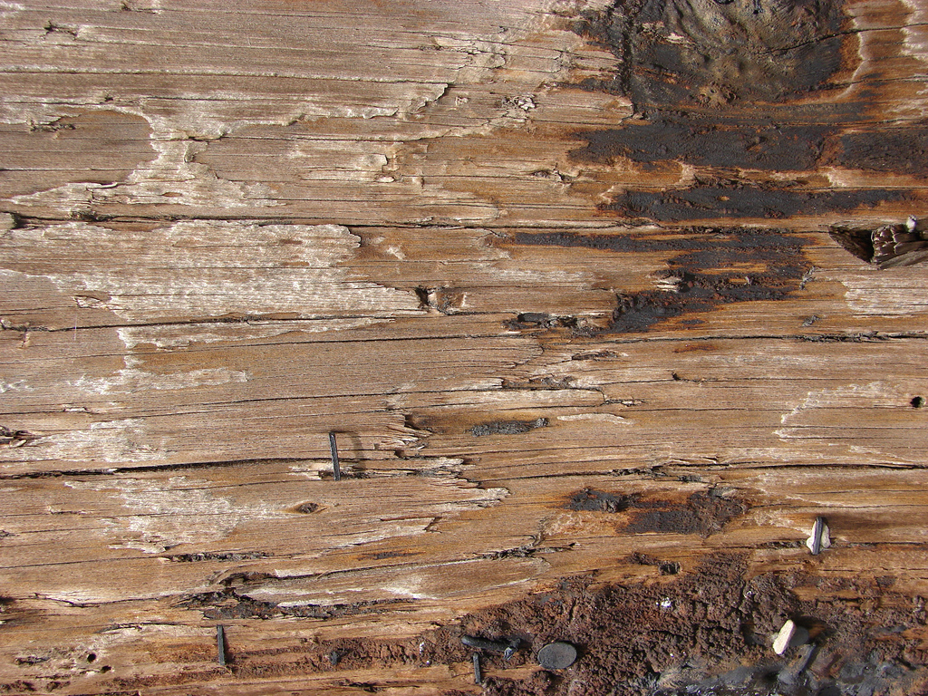 Weathered Wood 5 1024x768