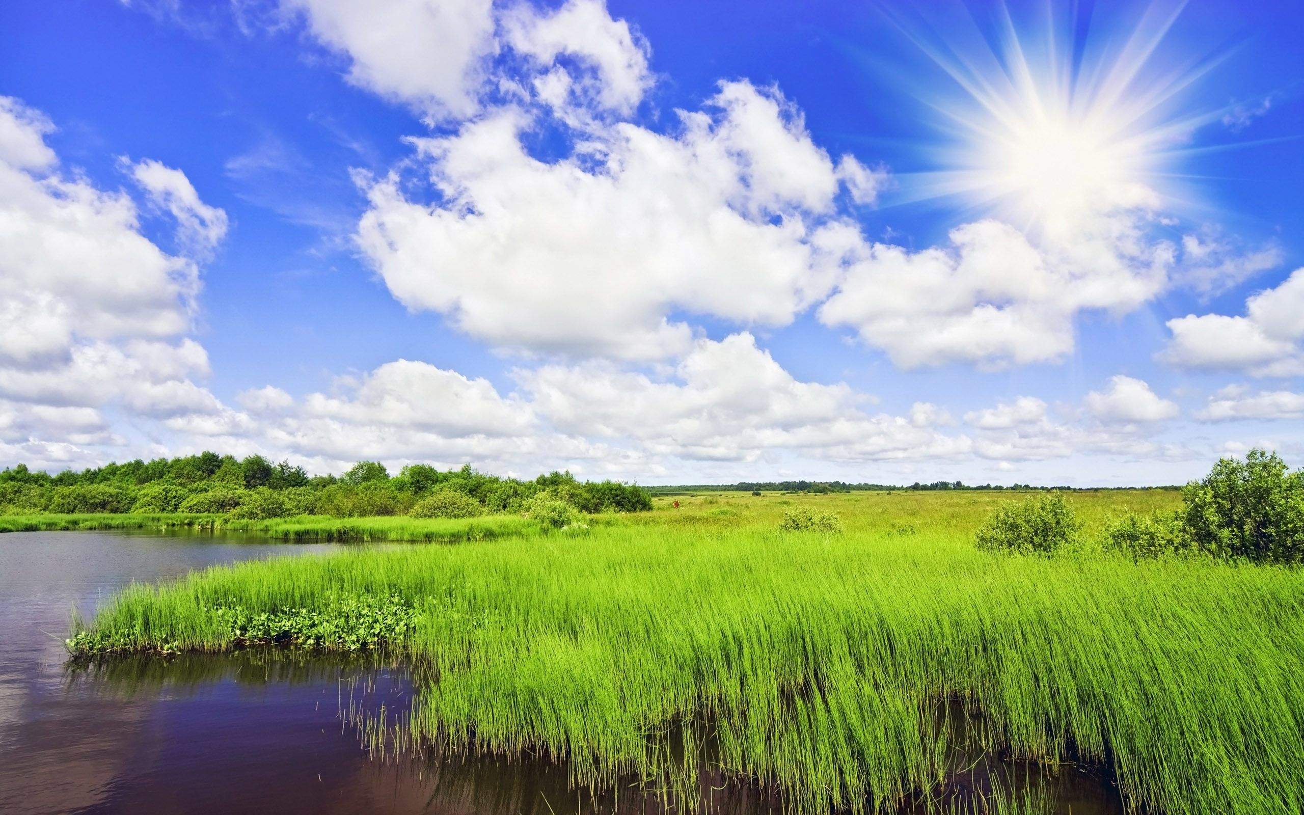 Wide HDQ Pretty Sunny Day Wallpapers 38 BSCB 2560x1600