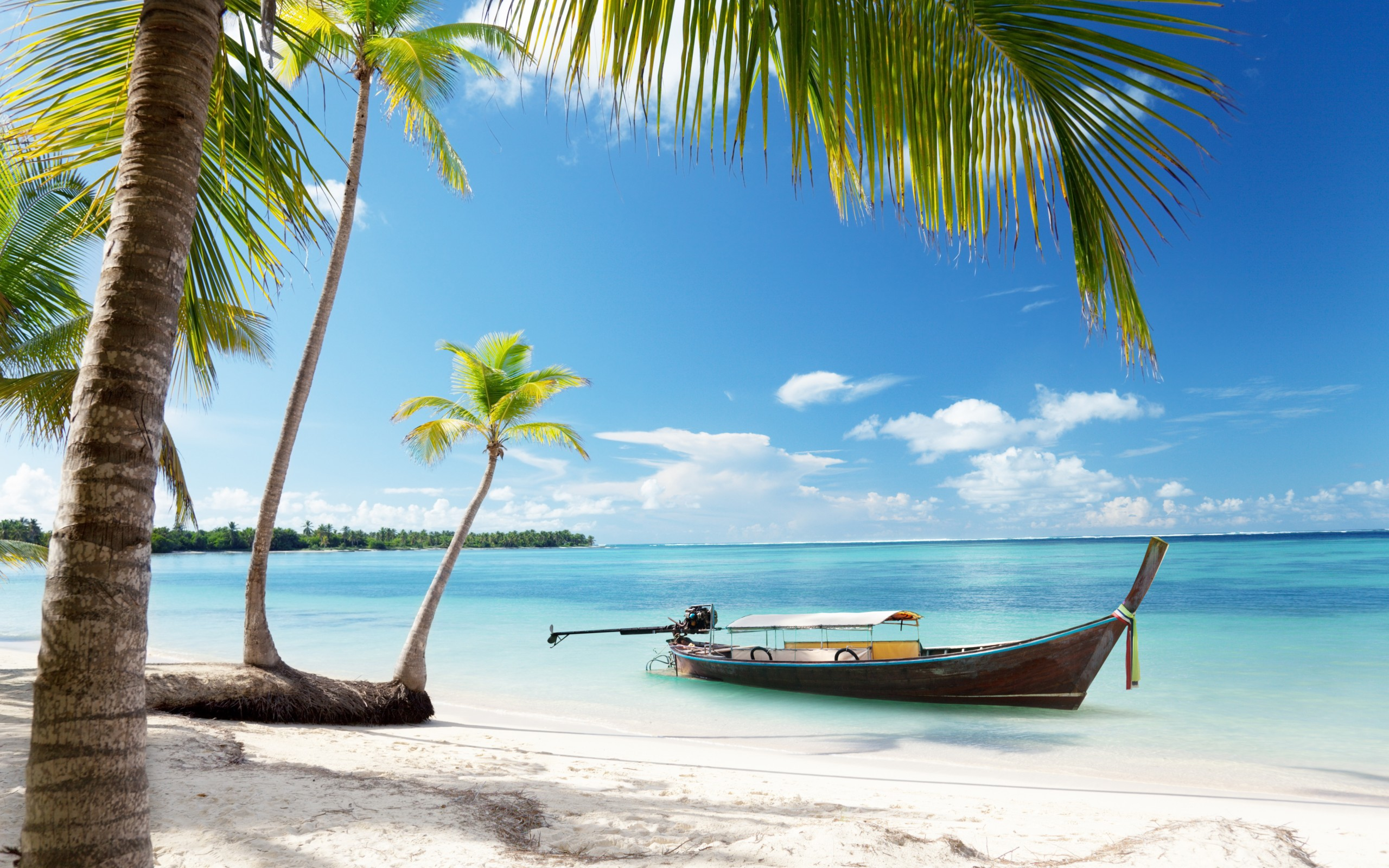 Tropical Paradise Beach Coast Sea Blue Emerald Ocean Palm: Tropical Resort Wallpaper