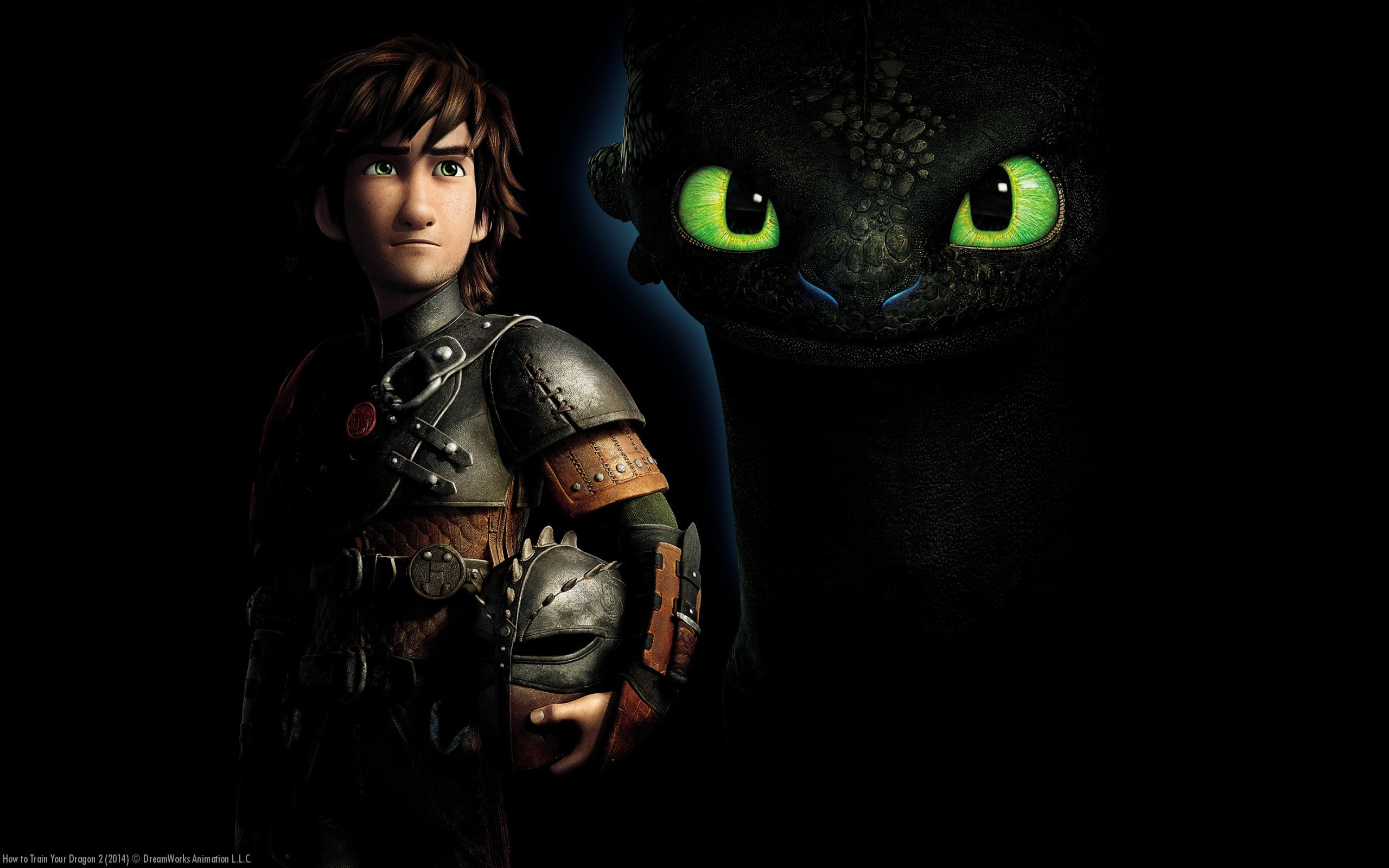 Toothless and Hiccup How To Train Your Dragon 2 HD Wallpaper 6848 2560x1600
