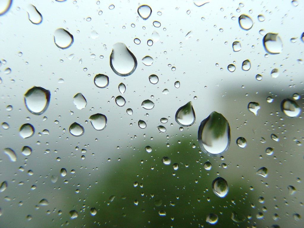 Free Download April Showers Wallpaper April Is Typically The