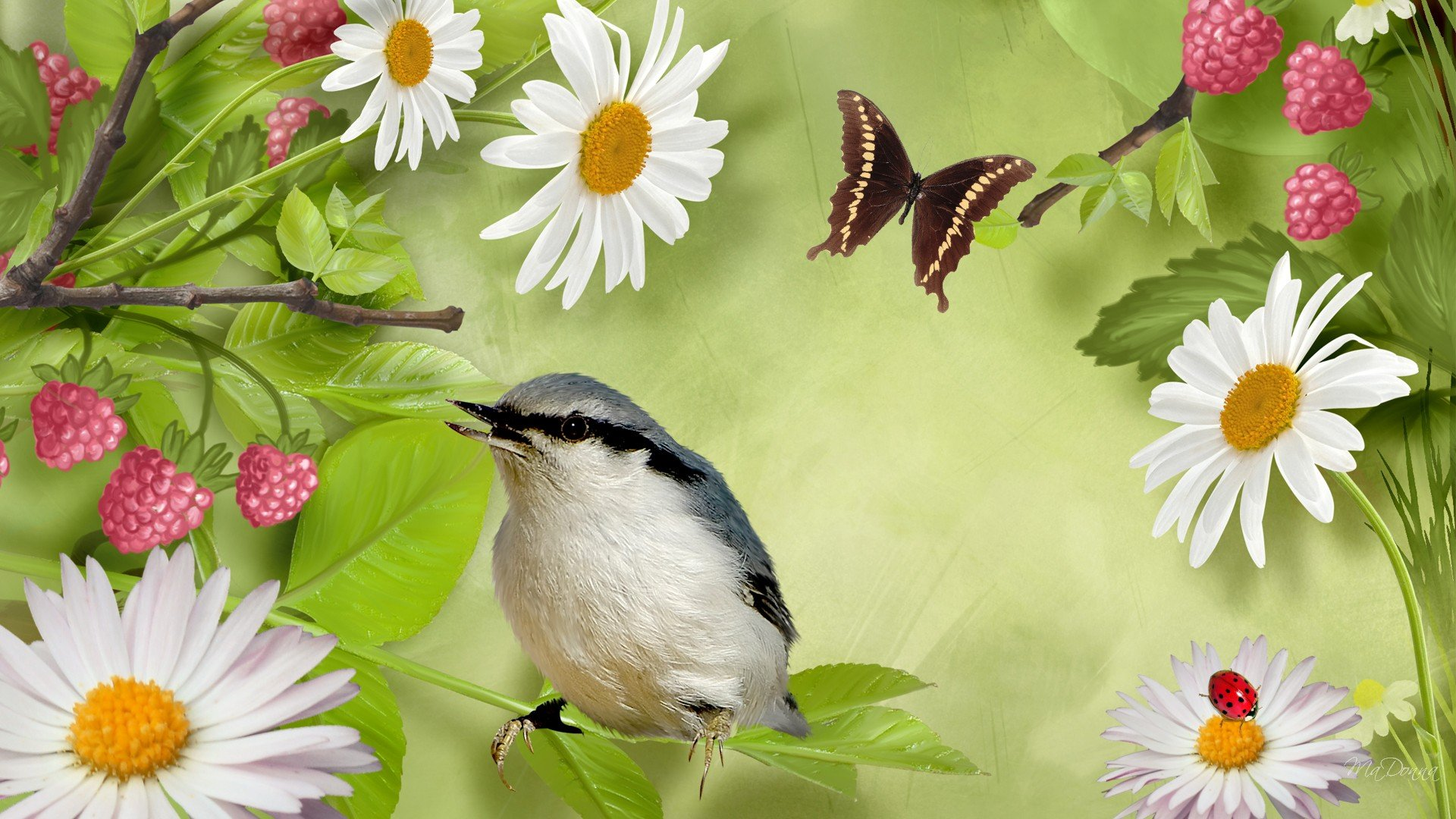 How to Attract Birds and Butterflies to Your Garden - AP Nursery