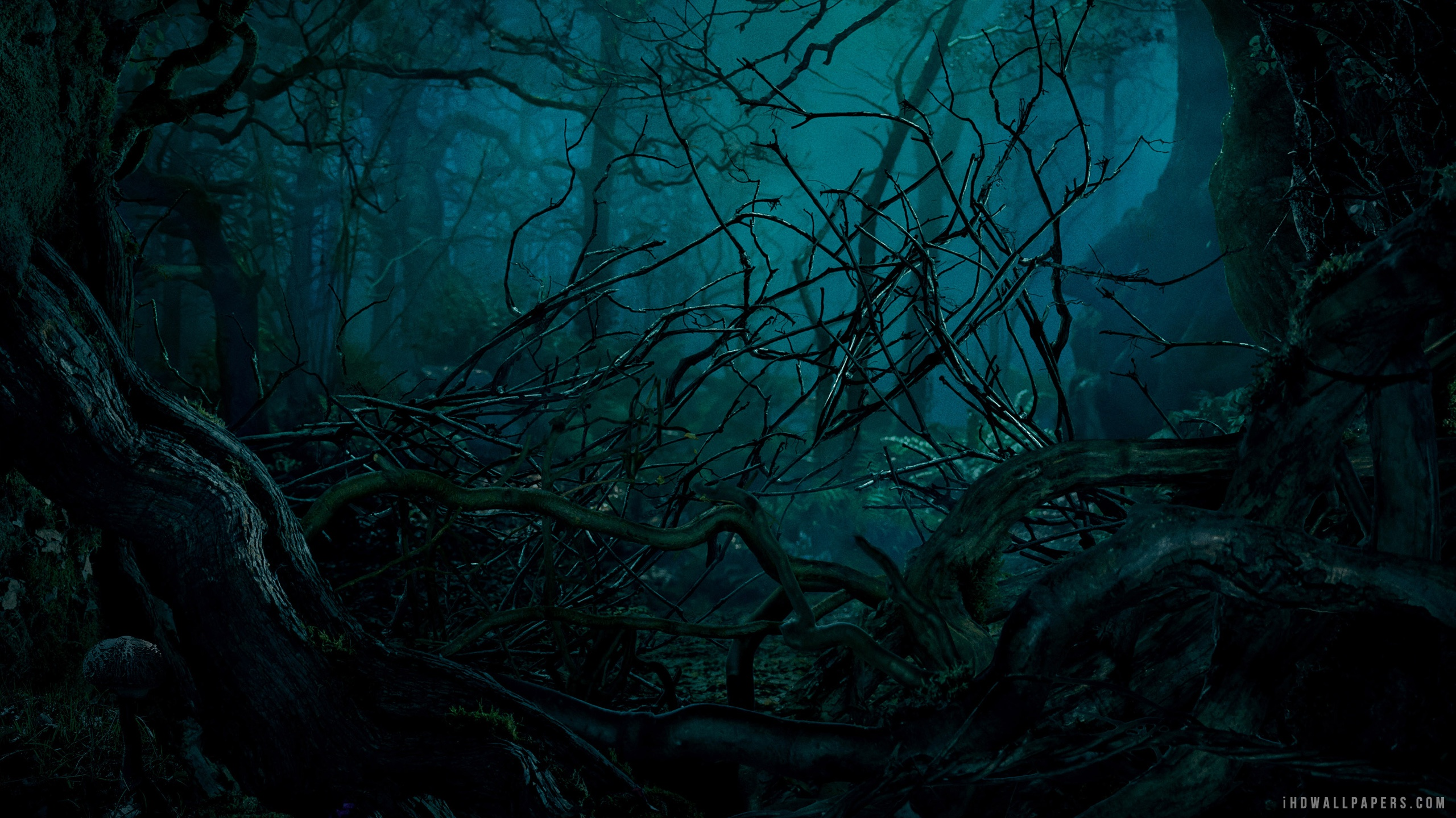 Into The Woods Movie HD Wallpaper   iHD Wallpapers 2560x1440