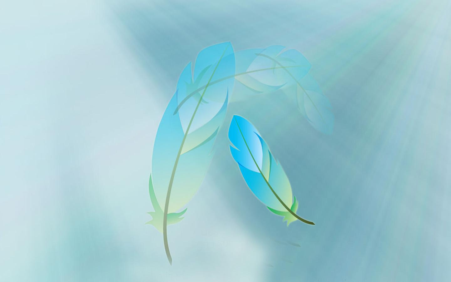 Beautiful Feathers Wallpapers and Pictures One HD 1440x900