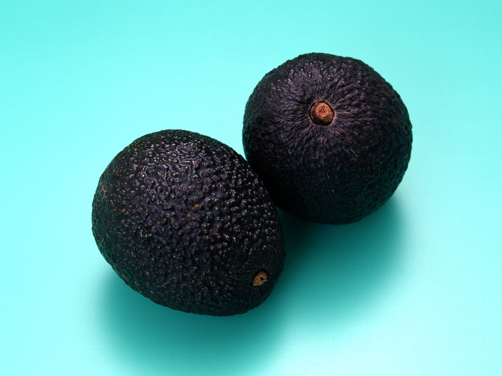 Black fruits wallpapers and images   wallpapers pictures photos 1600x1200