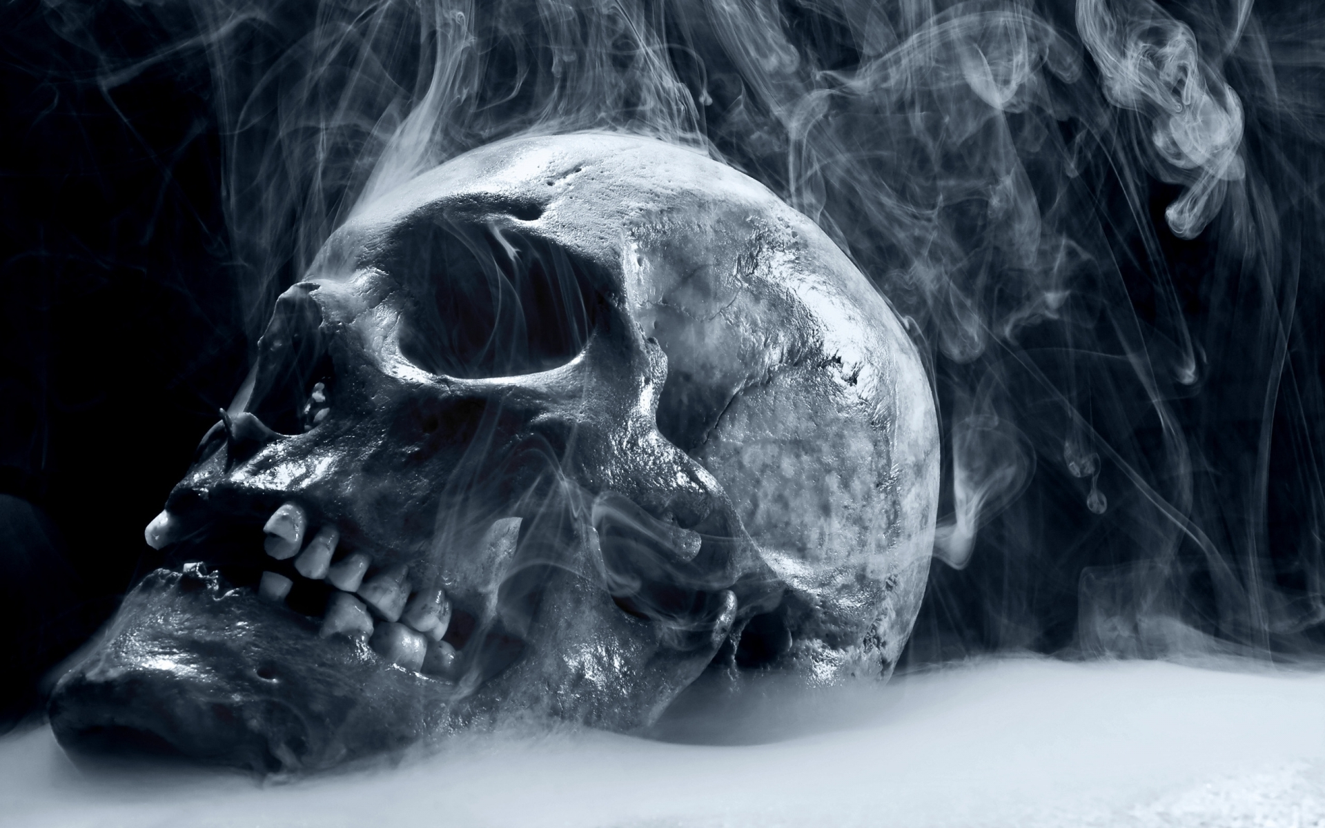 Scary Frozen Skull Wallpapers HD 1920x1200
