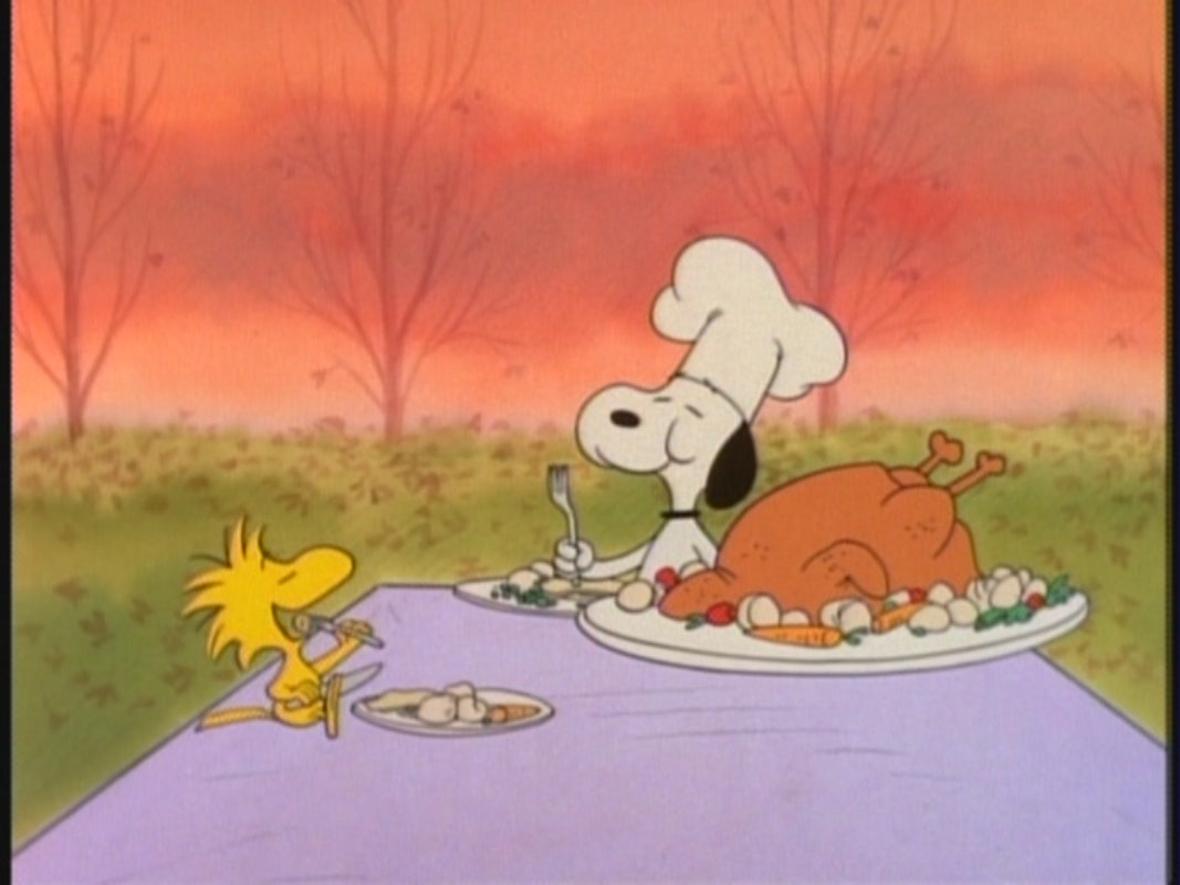 Free download Snoopy Thanksgiving Wallpaper [1067x800] for ...
