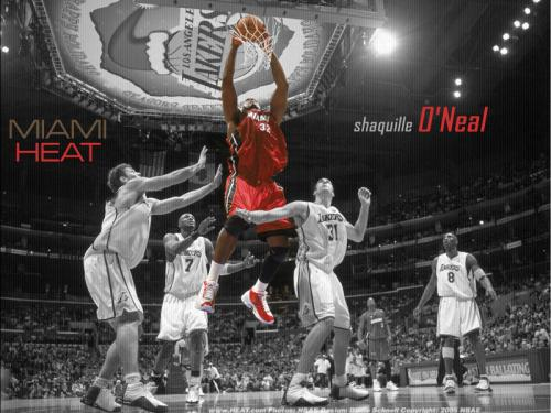 miami heat wallpapers enjoy shaquille o neal miami heat wallpapers 500x375
