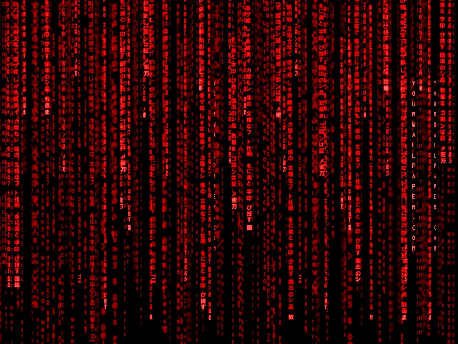 Google themes matrix - Red Matrix Wallpaper 1600x1200 Red Matrix Code