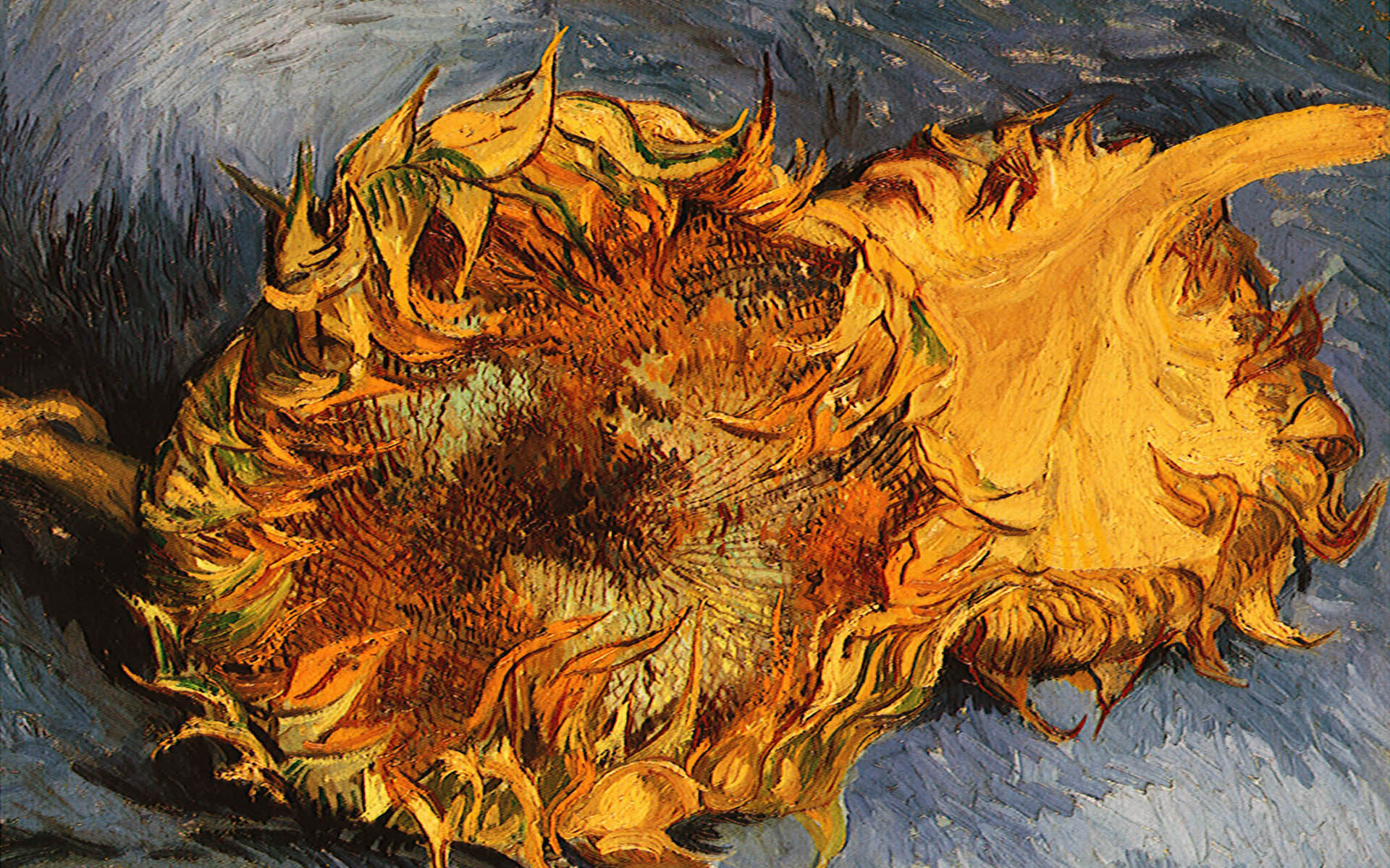 Van gogh Wallpapers and Backgrounds 1920x1200