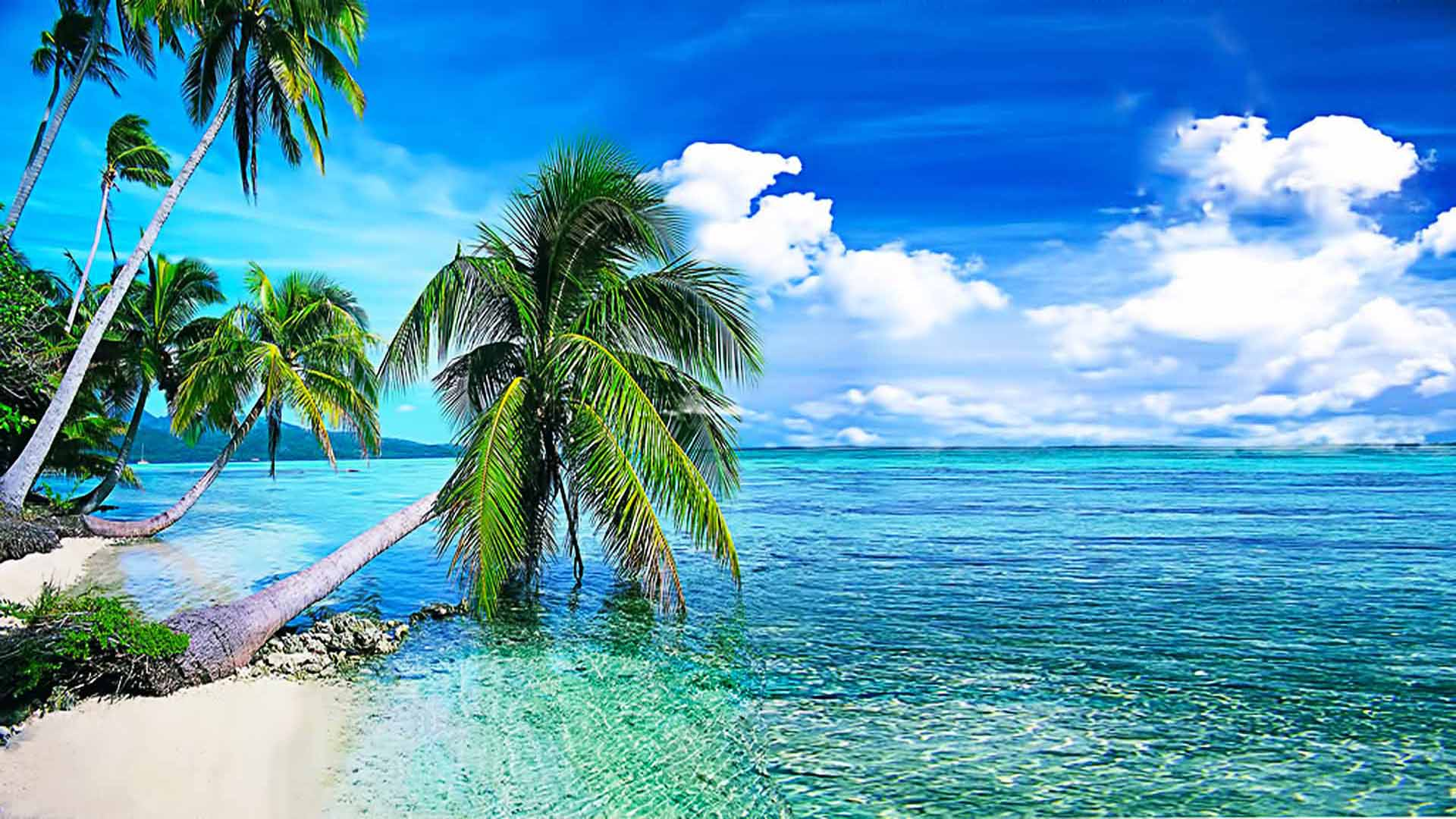 Hd Tropical Island Beach Paradise Wallpapers And Backgrounds: Tropical Beach Desktop Wallpaper