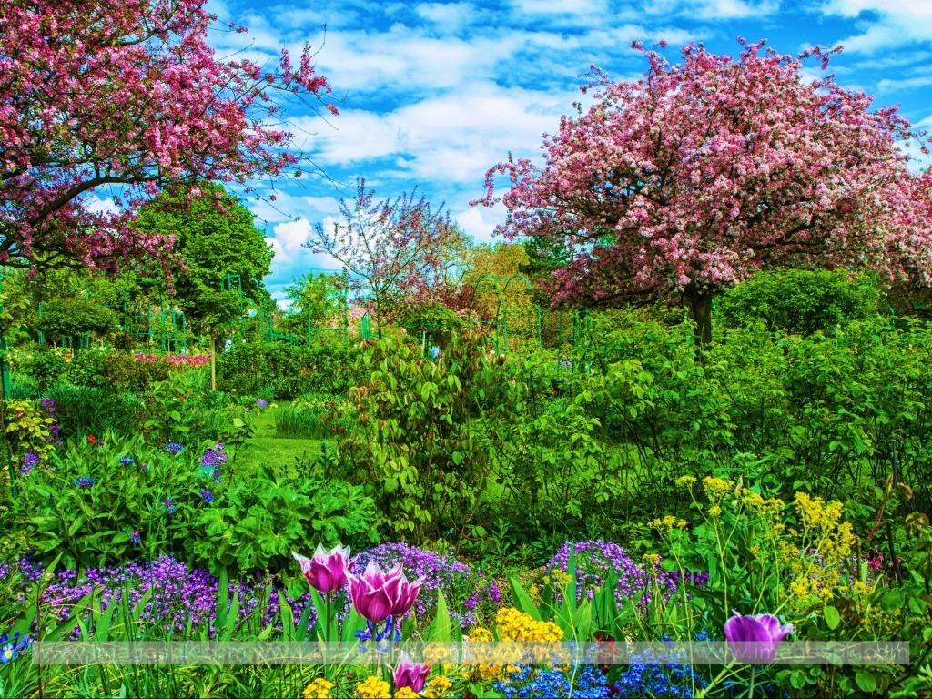 [46+] Spring HD Wallpapers 1080p on WallpaperSafari