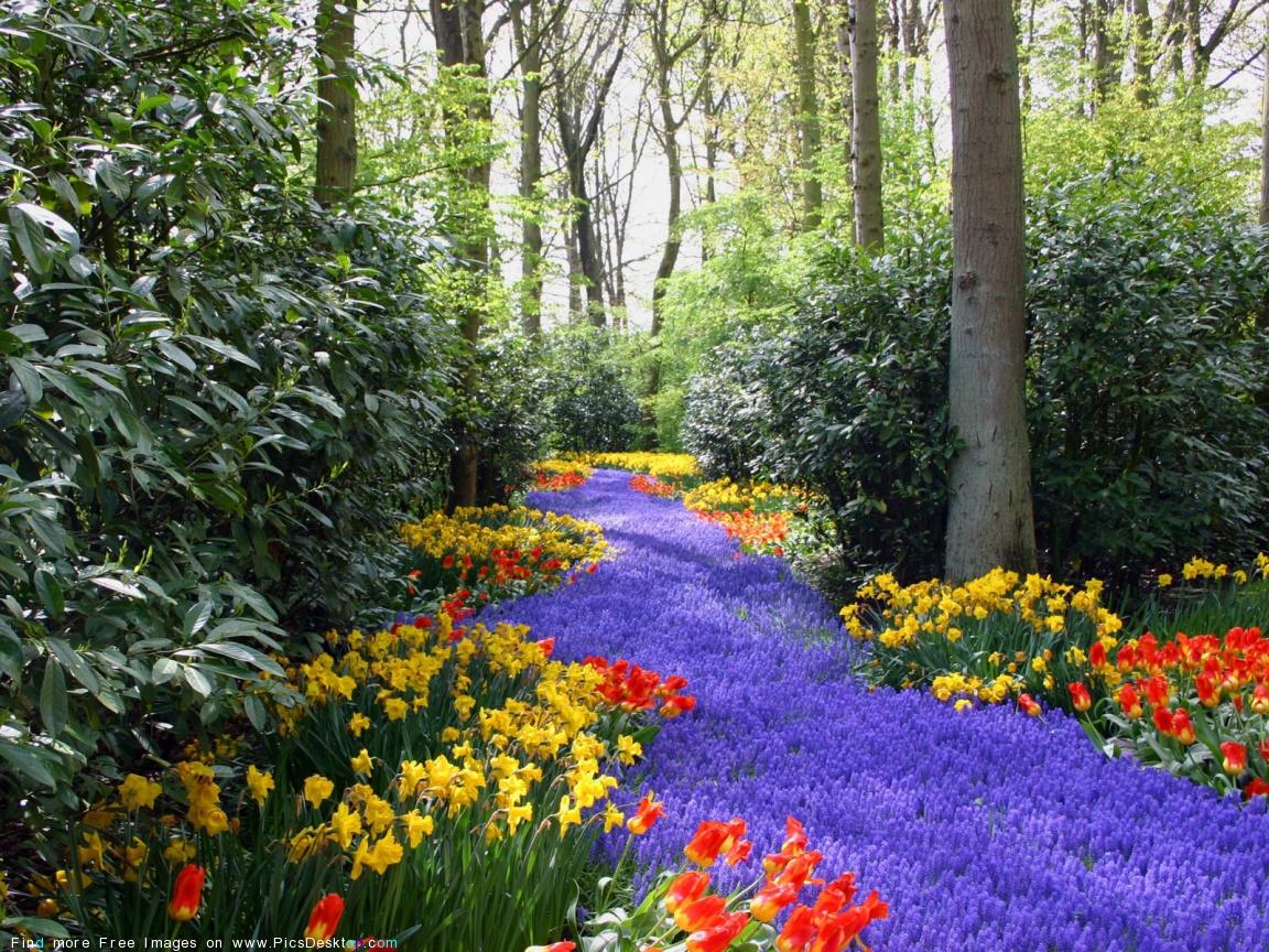 Springtime Wallpaper And Screensavers, HDQ Beautiful Springtime ...