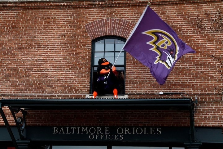 Oriole Bird know who to cheer for in the off season 720x480