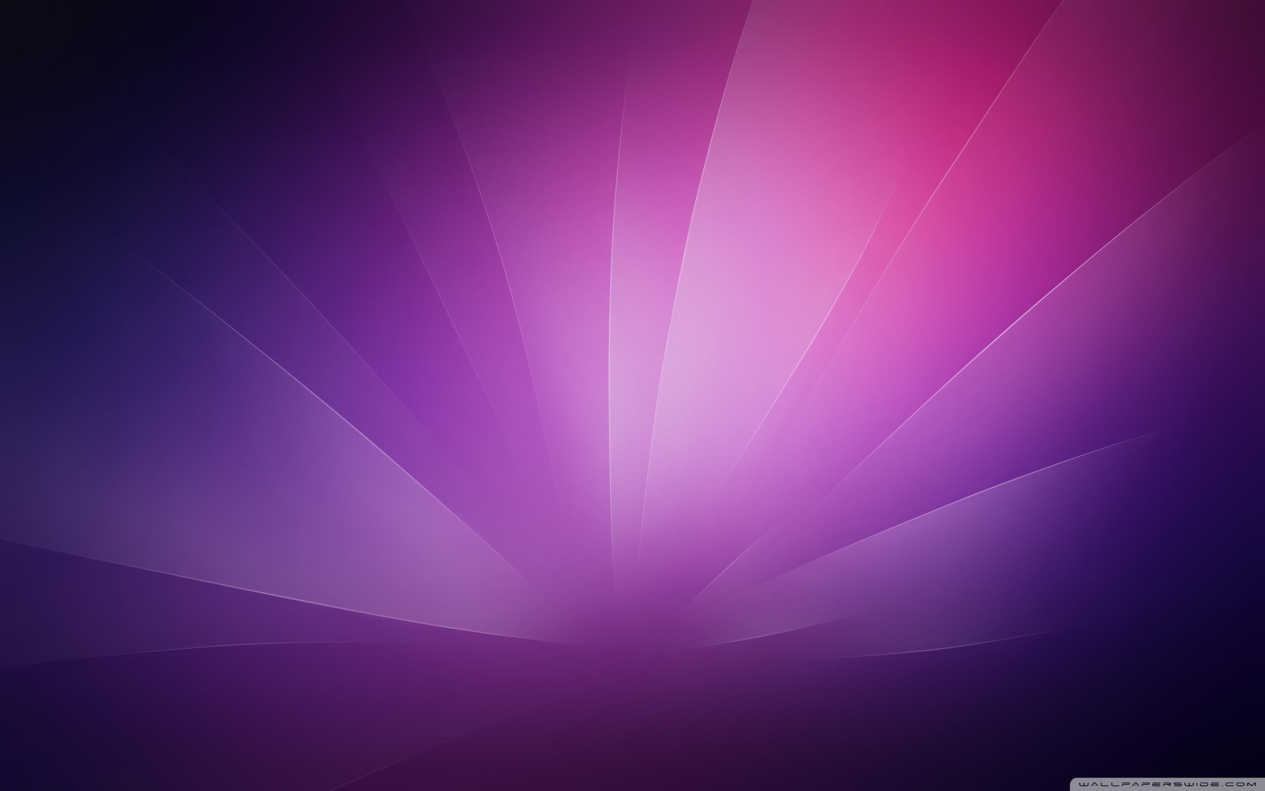 Purple Minimalist Background Ultra HD Desktop Background Wallpaper 2560x1600