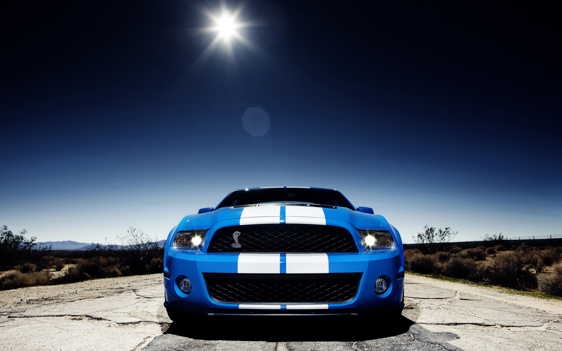 Mustang Shelby Cobra Gt 500 Computer Wallpapers Desktop Backgrounds 1920x1200