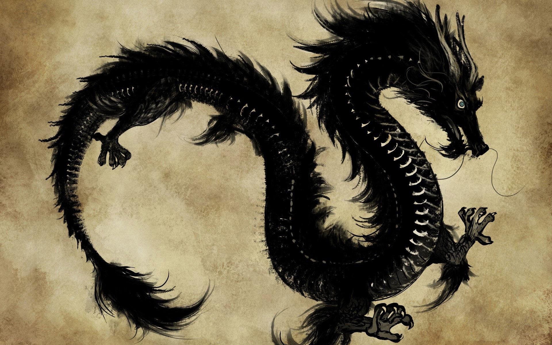 Chinese dragon Wallpaper 5973 1920x1200