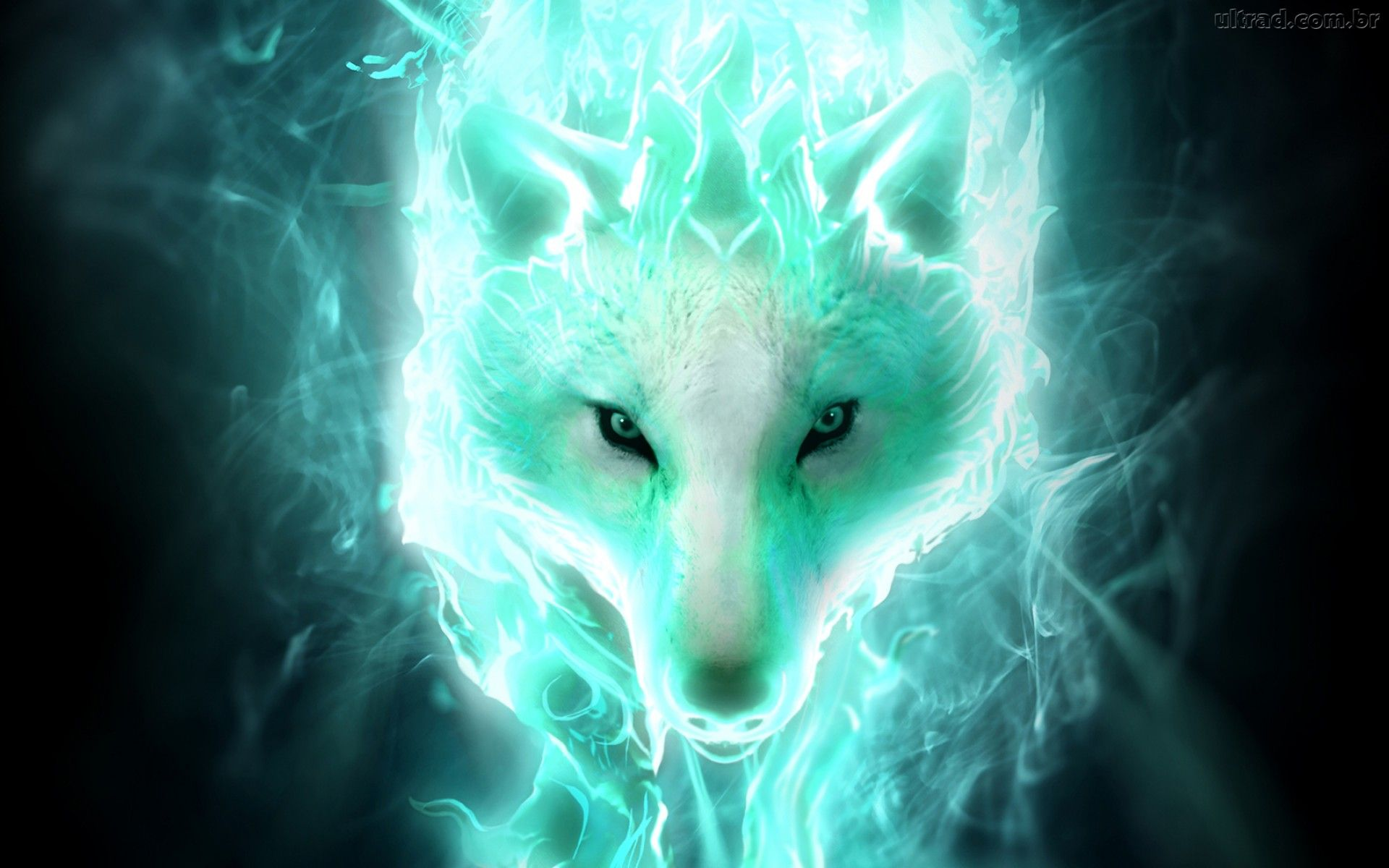 Fantasy Wolf Wallpaper - WallpaperSafari