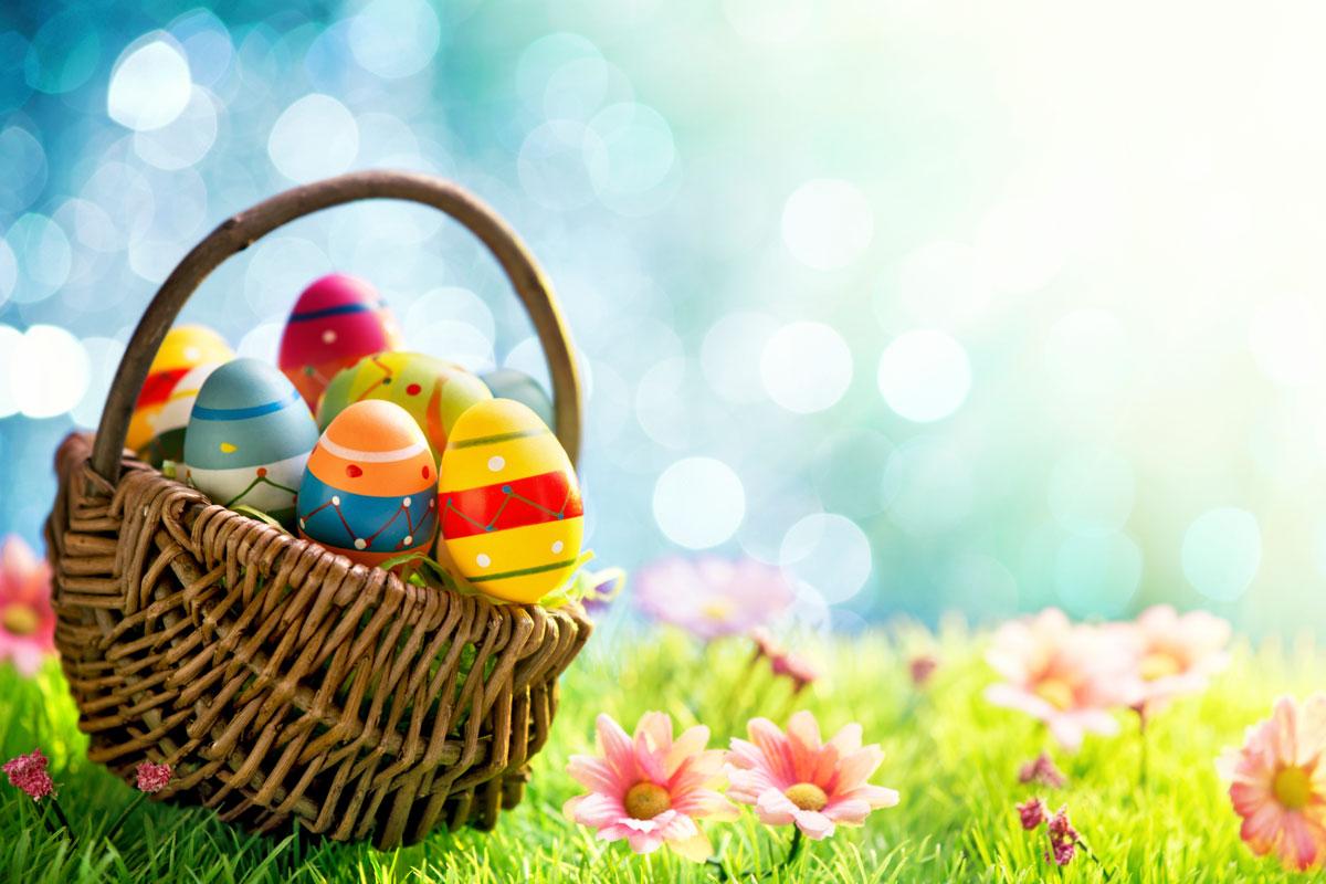 Annual Egg Hunt Returns to DCTC DCTC News 1200x800