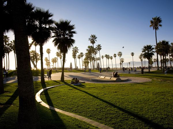 Venice Beach Wallpaper 600x450
