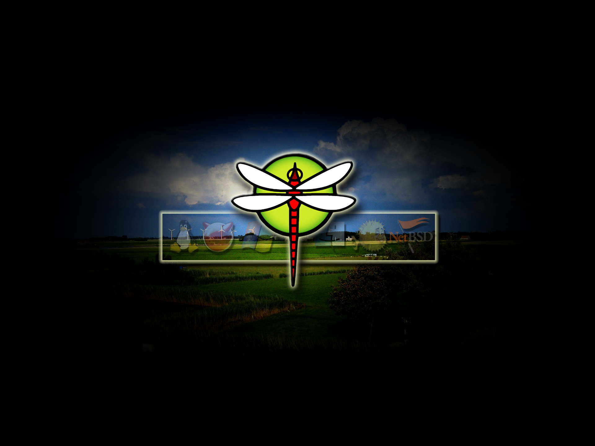 More DragonFly wallpapers Surrender Submit 1920x1440