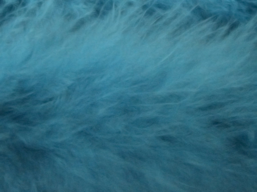Sky Blue Faux Fur or Feathers by SweetSoulSister 900x675