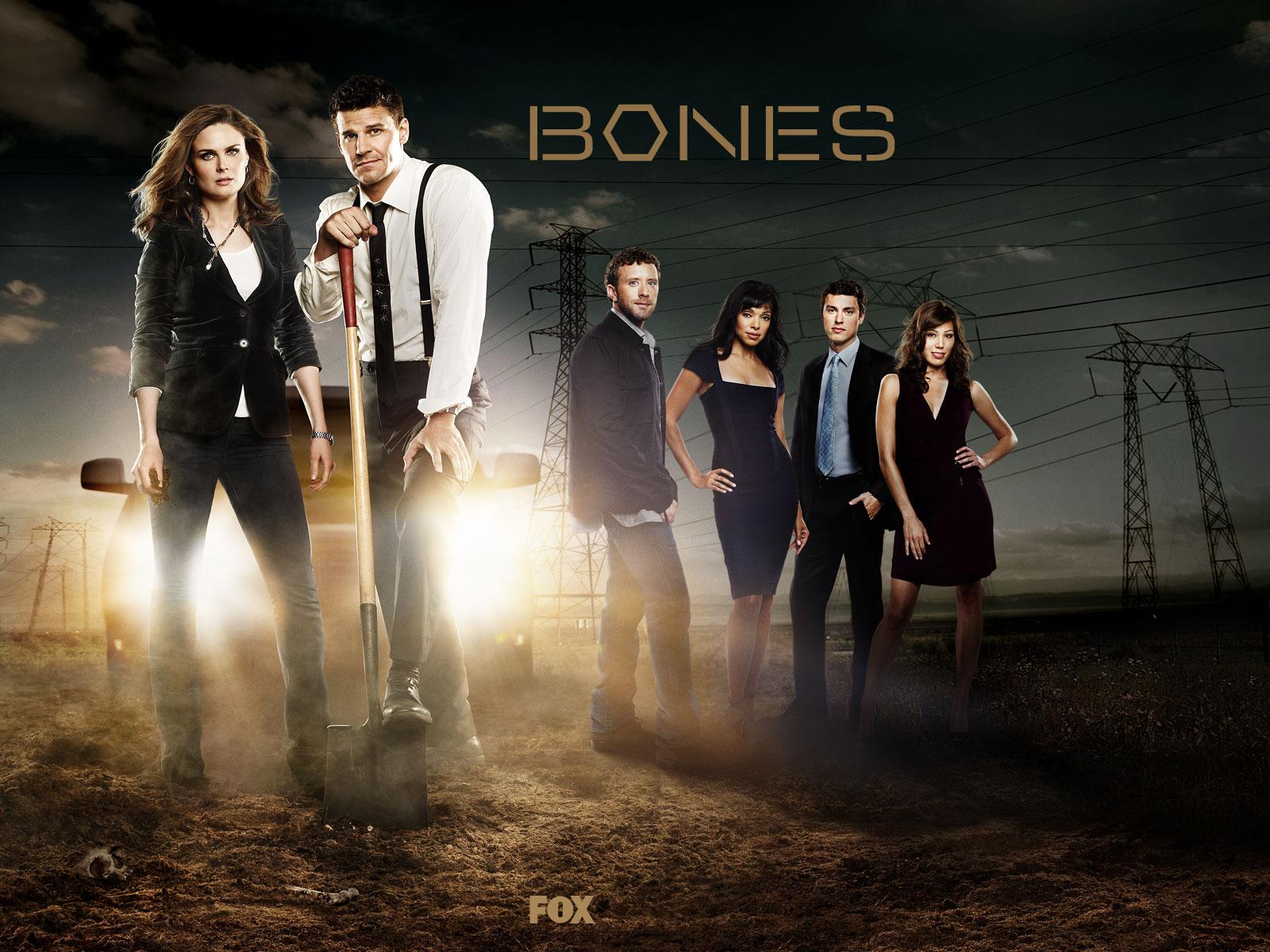1600x1200 Bones TV Show Cast desktop PC and Mac wallpaper 1600x1200